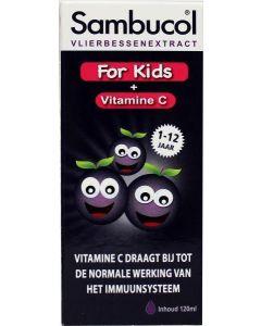 Vlierbessensiroop for kids