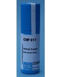 CNP17 DKTP Constitutieplex