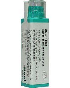 Hepar sulphur D200