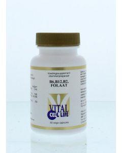 Vitamine B6/B12/B2 foliumzuur