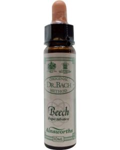 Beech Bach