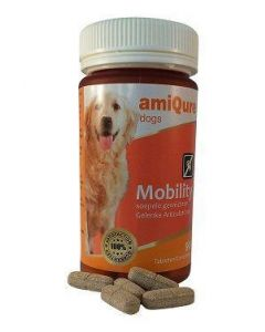 Mobility hond