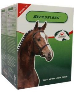 Stressless paard