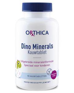 Dino minerals