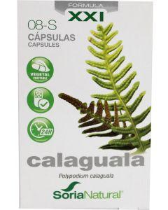 Calaguala XXI 08-S