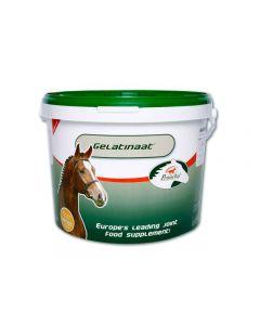Gelatinaat paard