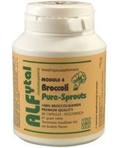 Broccoli pure-sprouts