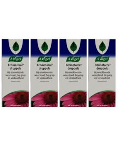 A Vogel Echinaforce vierpak 4x 100ml